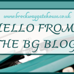 Hello from The BG Blog.